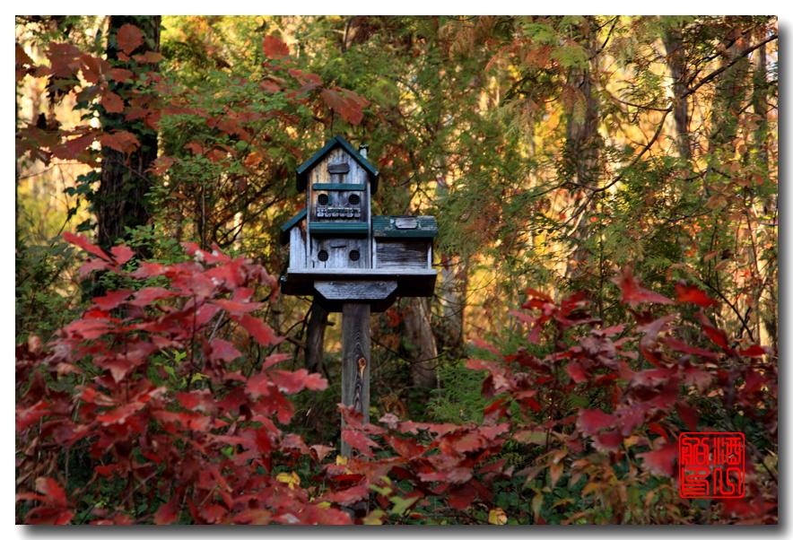 《原创摄影》:弗吉尼亚的天然桥_图1-19