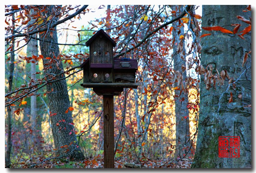 《原创摄影》:弗吉尼亚的天然桥_图1-21