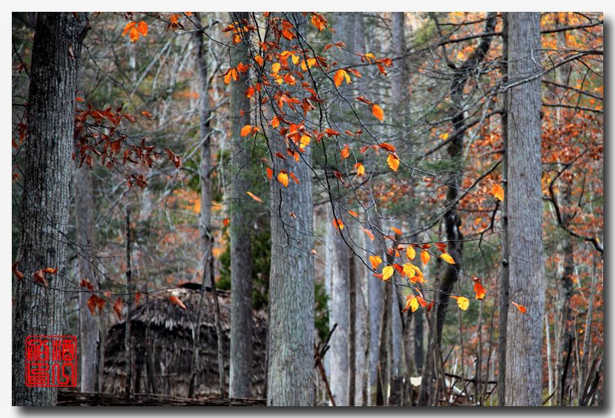 《原创摄影》:弗吉尼亚的天然桥_图1-43