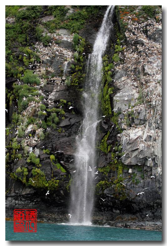 《原创摄影》:万年寒冰的纹理:梦中的阿拉斯加之十二_图1-4