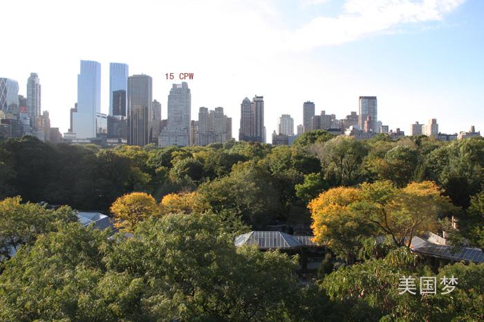 看!纽约曼哈顿8800万元豪宅_图1-2