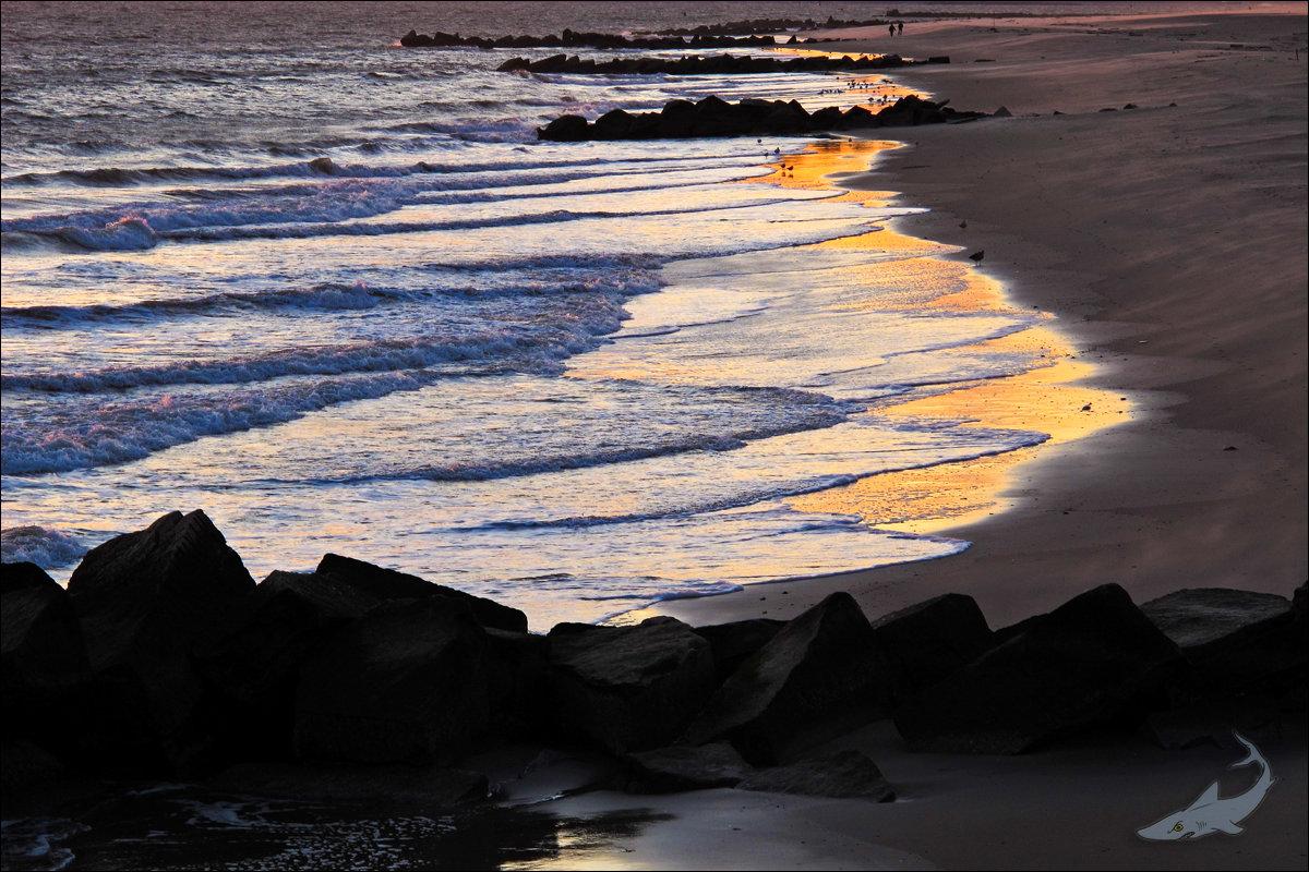 康尼岛日落(G12)_图1-3