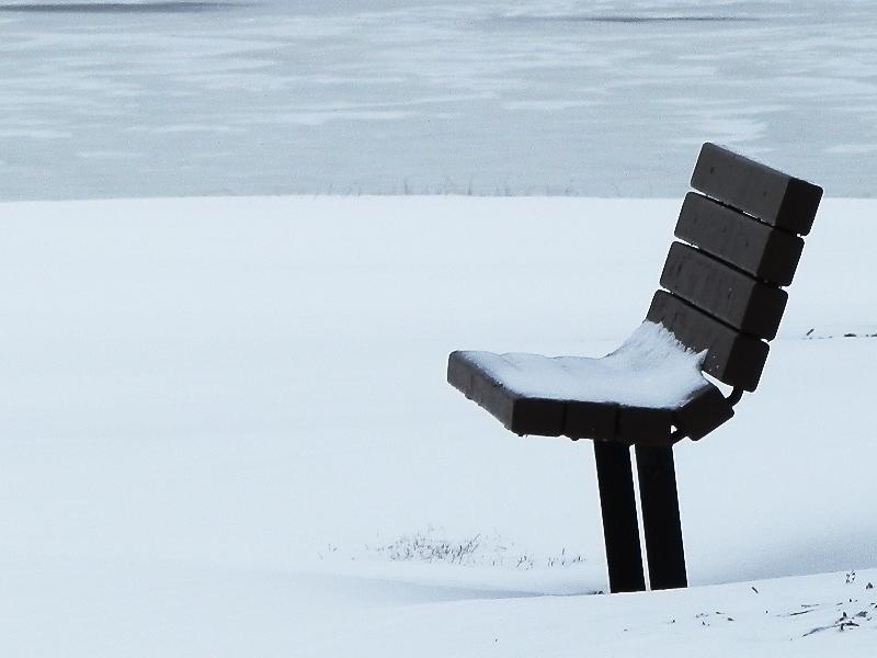 诗情画意01:雪染的风采_图1-11
