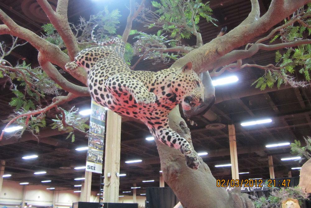 《国际顶级狩猎展一瞥》摆渡_图1-11