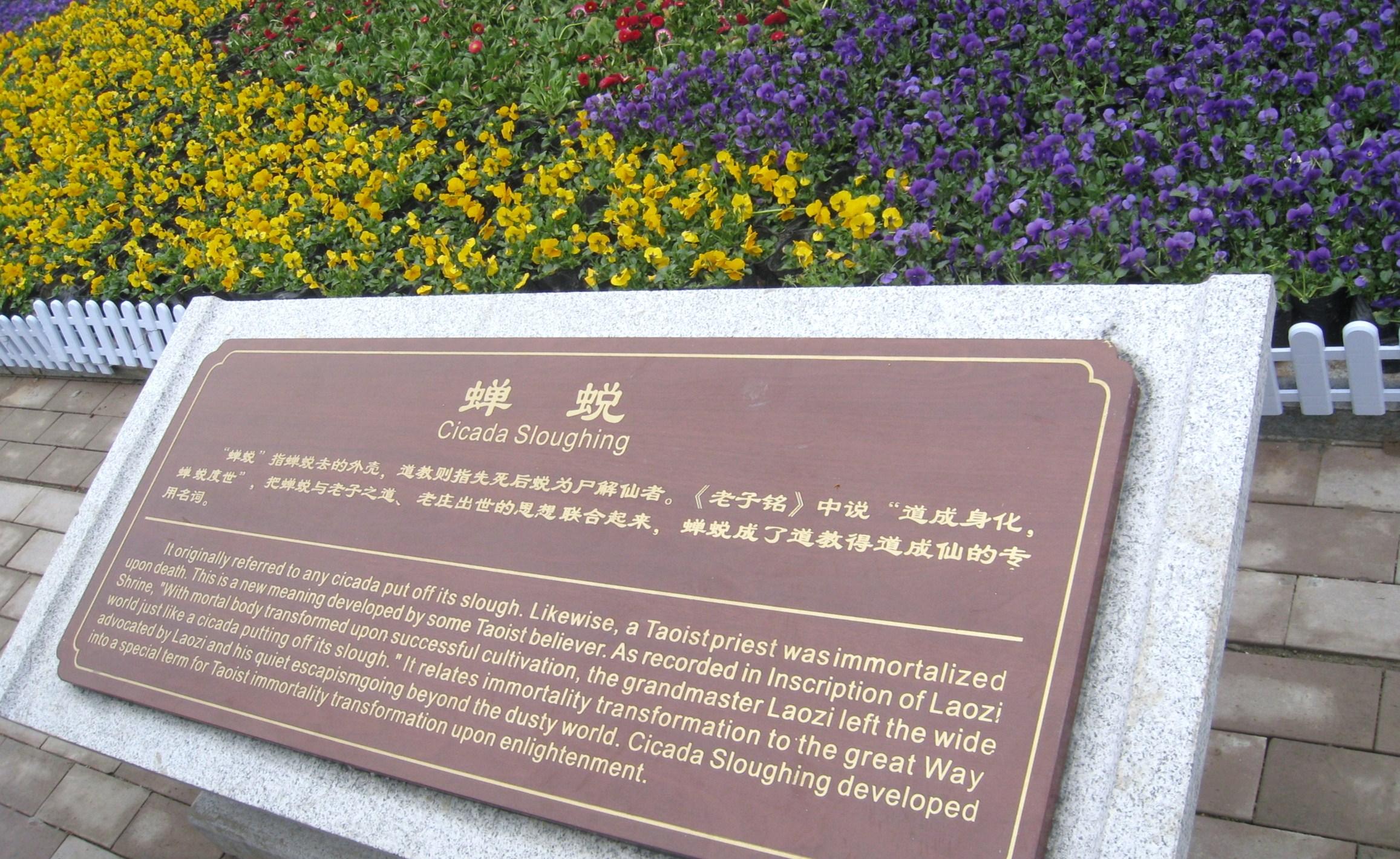 楼观台老子文化节_图1-39