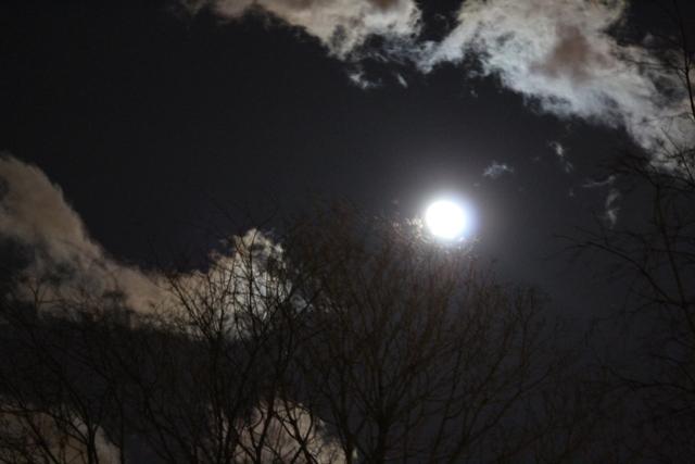 """云是""""龙"""",月是""""珠""""_图1-1"""