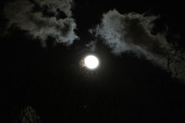 """云是""""龙"""",月是""""珠""""_图1-2"""