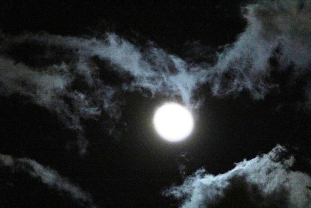 """云是""""龙"""",月是""""珠""""_图1-14"""