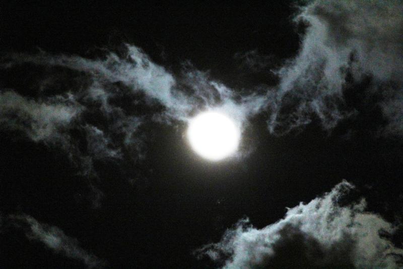 """云是""""龙"""",月是""""珠""""_图1-7"""