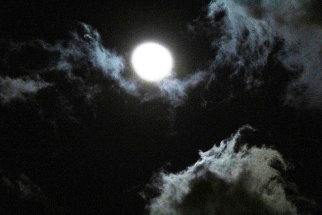 """云是""""龙"""",月是""""珠""""_图1-8"""