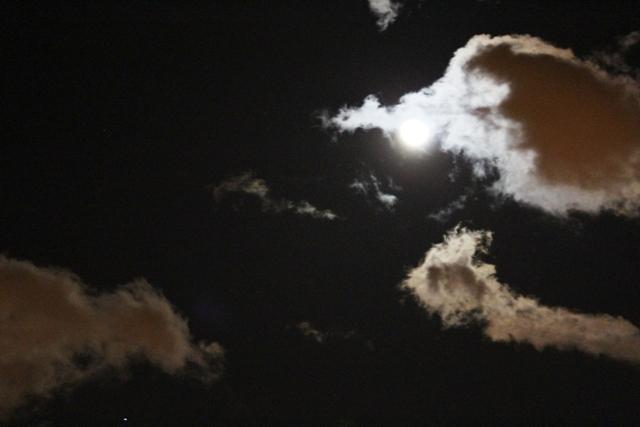 """云是""""龙"""",月是""""珠""""_图1-10"""
