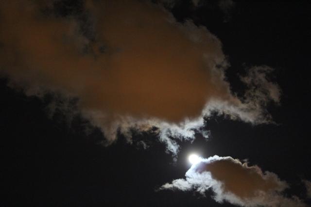 """云是""""龙"""",月是""""珠""""_图1-11"""