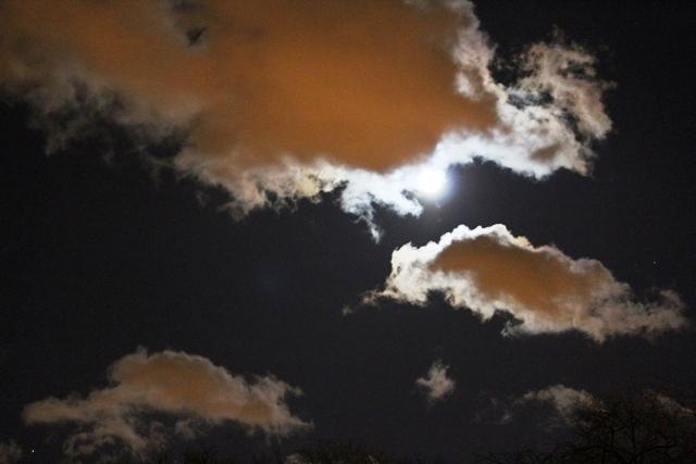 """云是""""龙"""",月是""""珠""""_图1-12"""