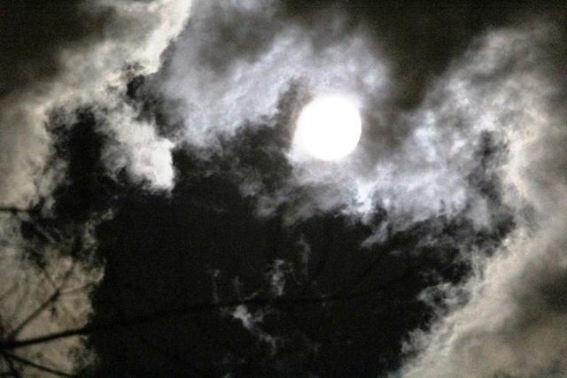 """云是""""龙"""",月是""""珠""""_图1-13"""