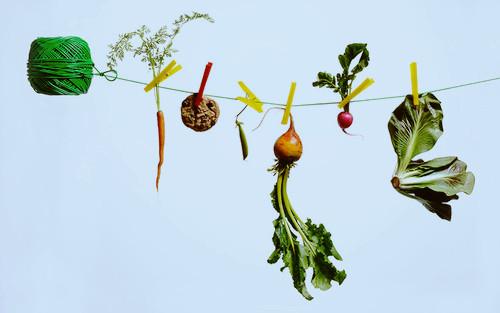 如何去除果蔬上的残留农药_图1-1