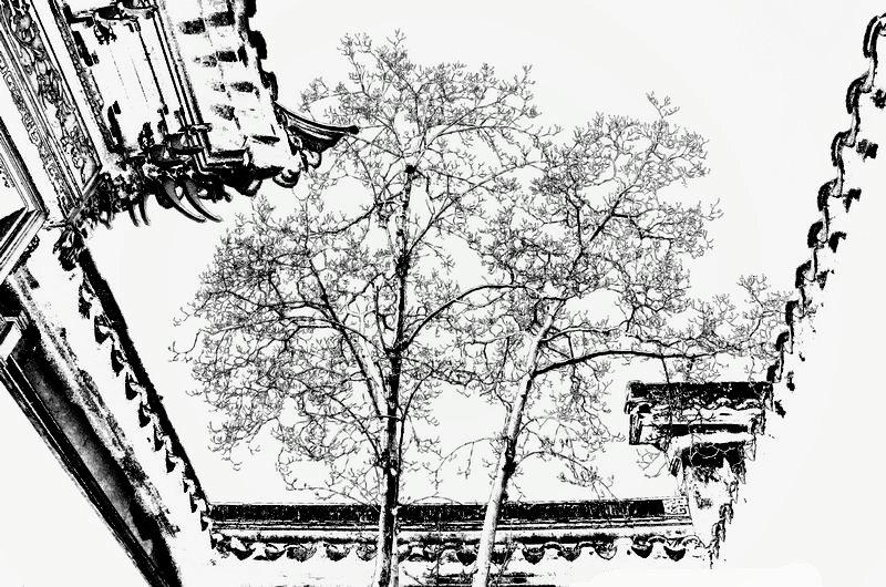 苏州网师园_图1-24