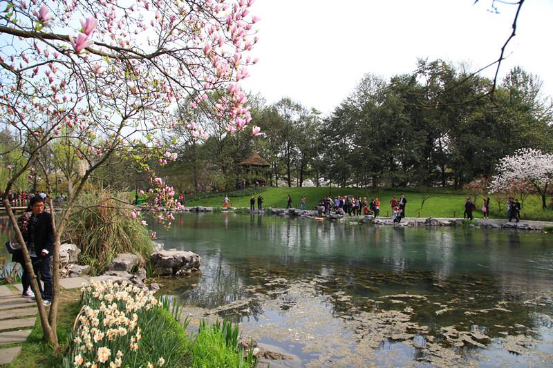 春日里的杭州太子湾美景_图1-2