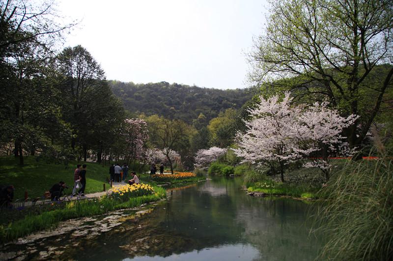 春日里的杭州太子湾美景_图1-3
