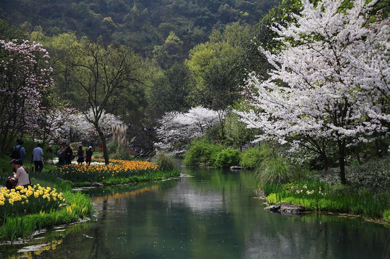 春日里的杭州太子湾美景_图1-4