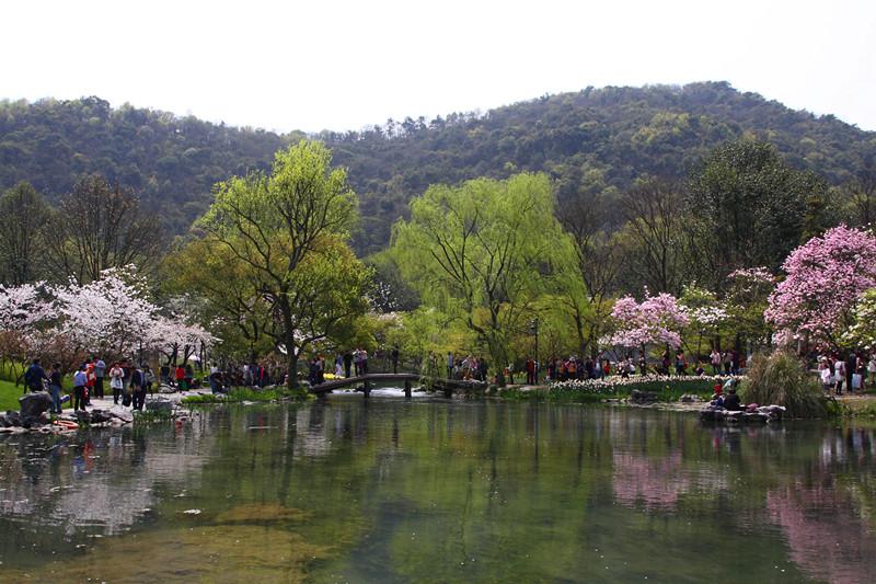 春日里的杭州太子湾美景_图1-6