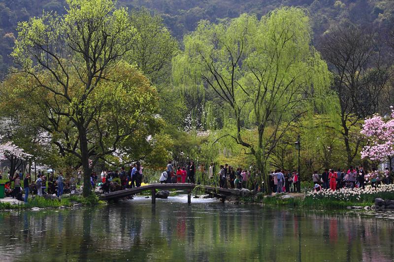 春日里的杭州太子湾美景_图1-9