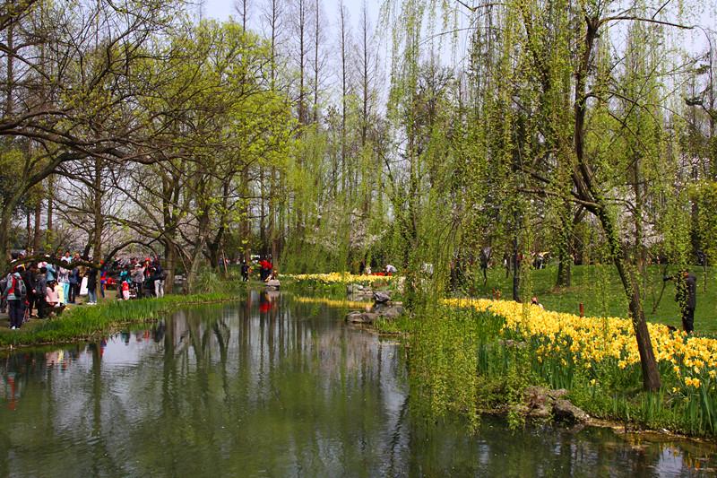 春日里的杭州太子湾美景_图1-10
