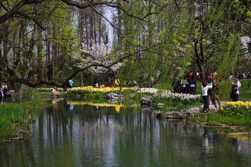 春日里的杭州太子湾美景_图1-11