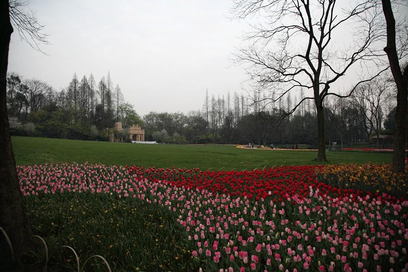 春日里的杭州太子湾美景_图1-16