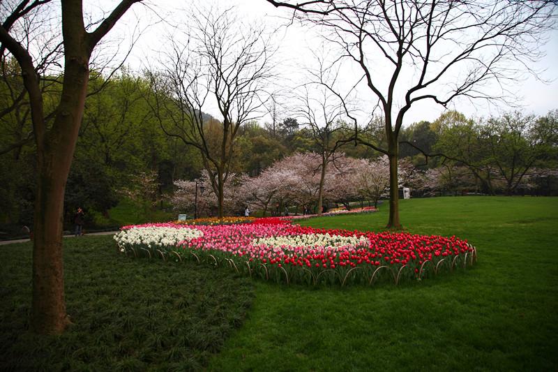春日里的杭州太子湾美景_图1-18
