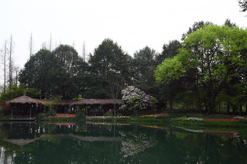 春日里的杭州太子湾美景_图1-23