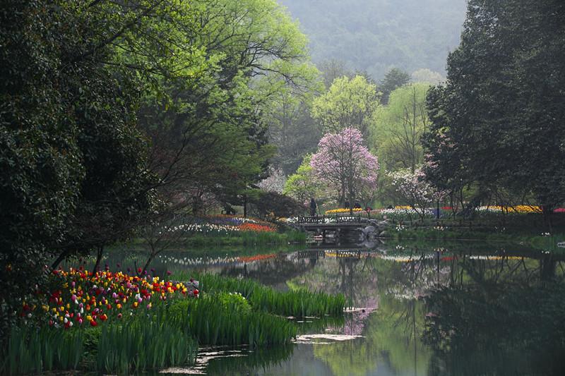 春日里的杭州太子湾美景_图1-24
