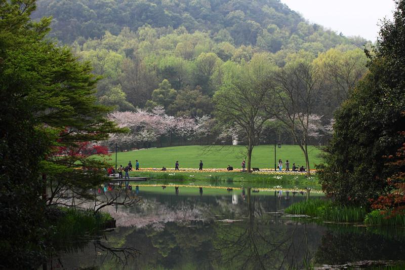 春日里的杭州太子湾美景_图1-25