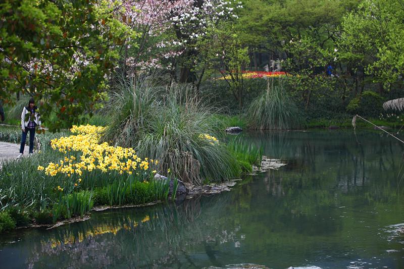 春日里的杭州太子湾美景_图1-27