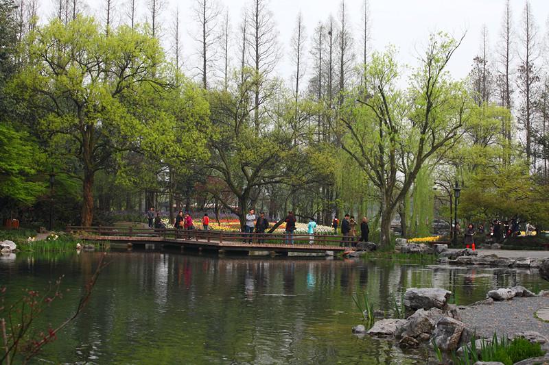 春日里的杭州太子湾美景_图1-28