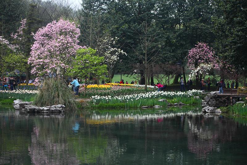 春日里的杭州太子湾美景_图1-30