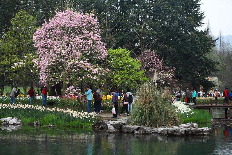 春日里的杭州太子湾美景_图1-32