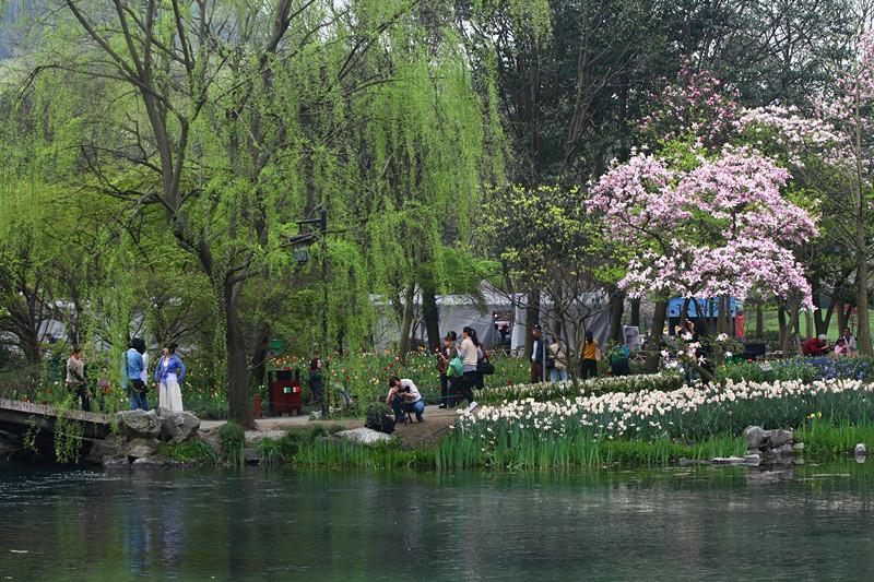 春日里的杭州太子湾美景_图1-31