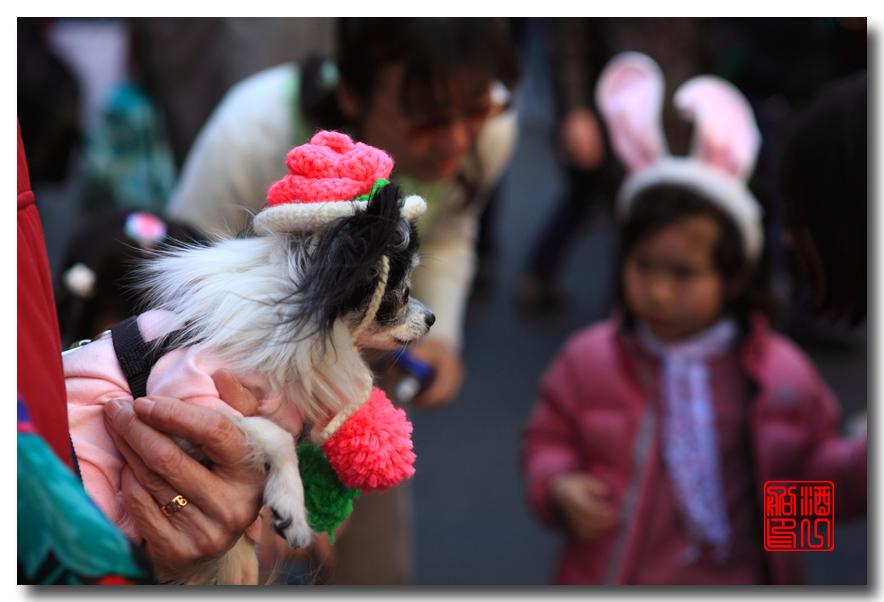 《原创摄影》:复活节的纽约街头_图1-26
