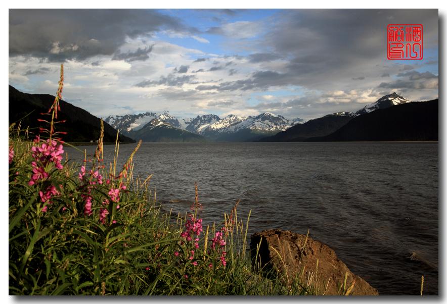《原创摄影》:观景公路,景观如画:梦中的阿拉斯加之十九 ... ... ... ..._图1-54