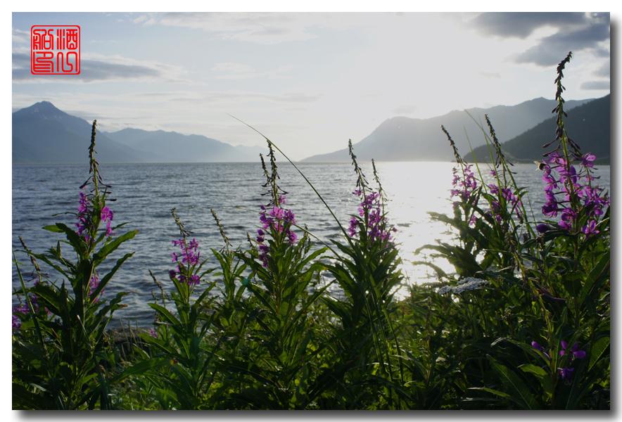 《原创摄影》:观景公路,景观如画:梦中的阿拉斯加之十九 ... ... ... ..._图1-55