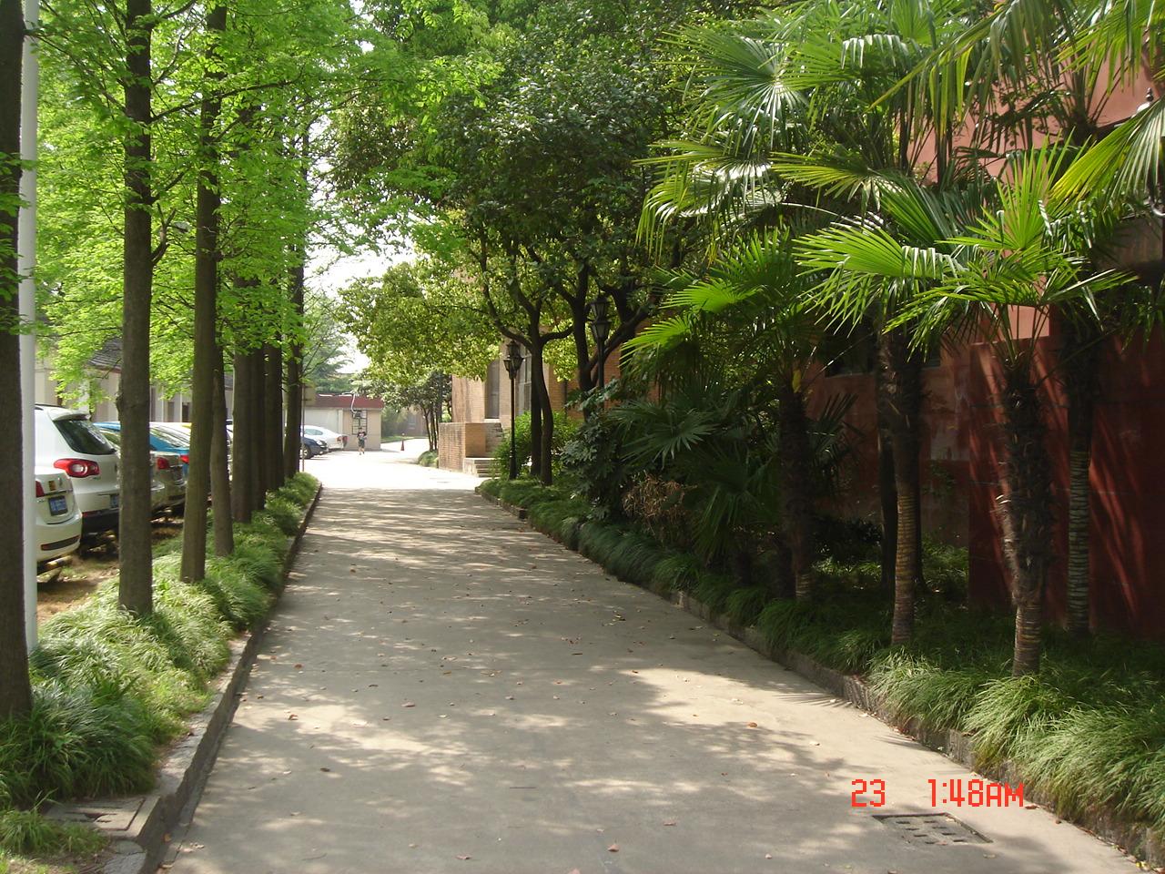 上海财经大学校园景色(原创)