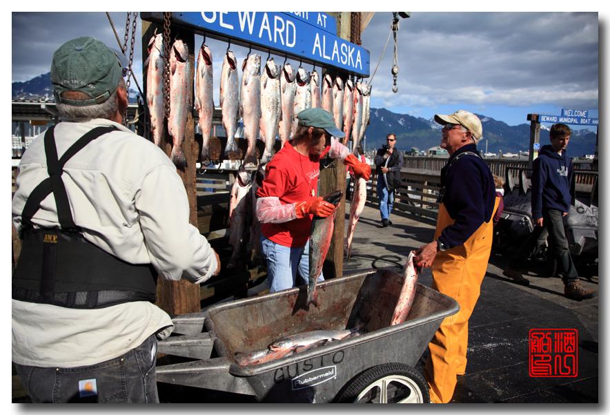 《原创摄影》:海钓小镇西沃德:梦中的阿拉斯加之二十_图1-12