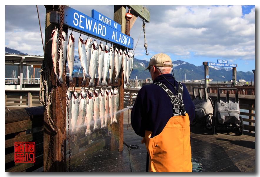 《原创摄影》:海钓小镇西沃德:梦中的阿拉斯加之二十_图1-13