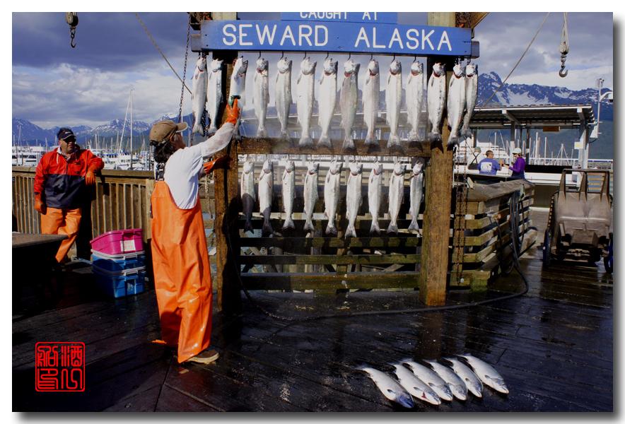 《原创摄影》:海钓小镇西沃德:梦中的阿拉斯加之二十_图1-16