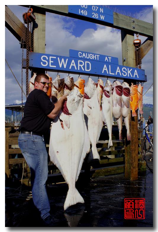 《原创摄影》:海钓小镇西沃德:梦中的阿拉斯加之二十_图1-47