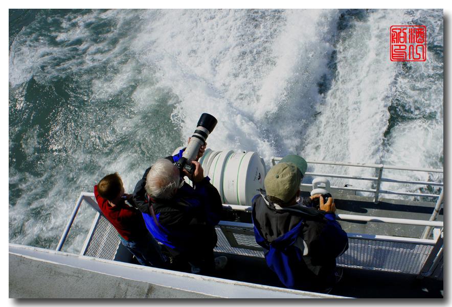 《原创摄影》:舟行Kenai峡湾国家公园:梦中的阿拉斯加之二十一 ..._图1-37