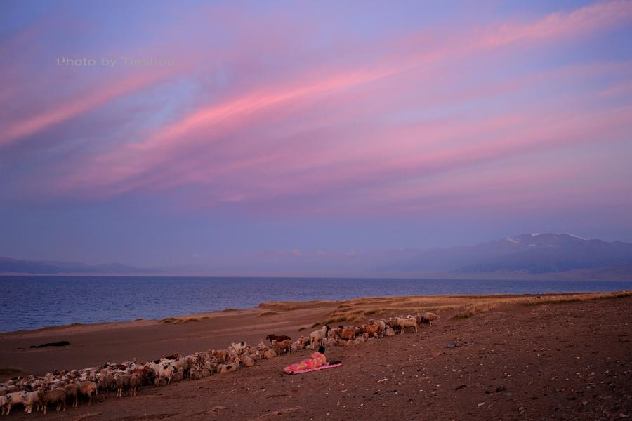 大美新疆——塞里木湖边牧羊人[原创]_图1-4