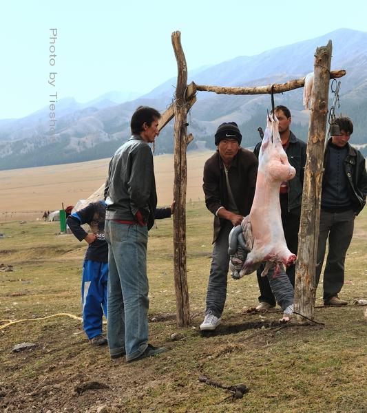 大美新疆——塞里木湖边牧羊人[原创]_图1-13