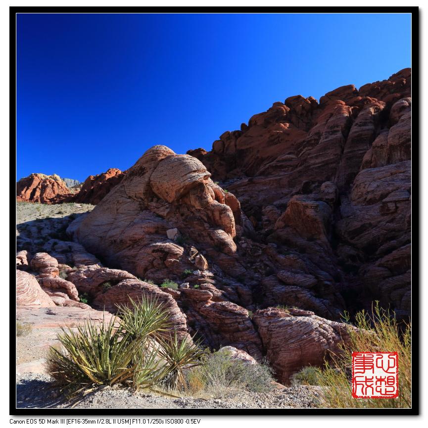 【心想事成】Red Rock Canyon 红石峡谷之旅_图1-2