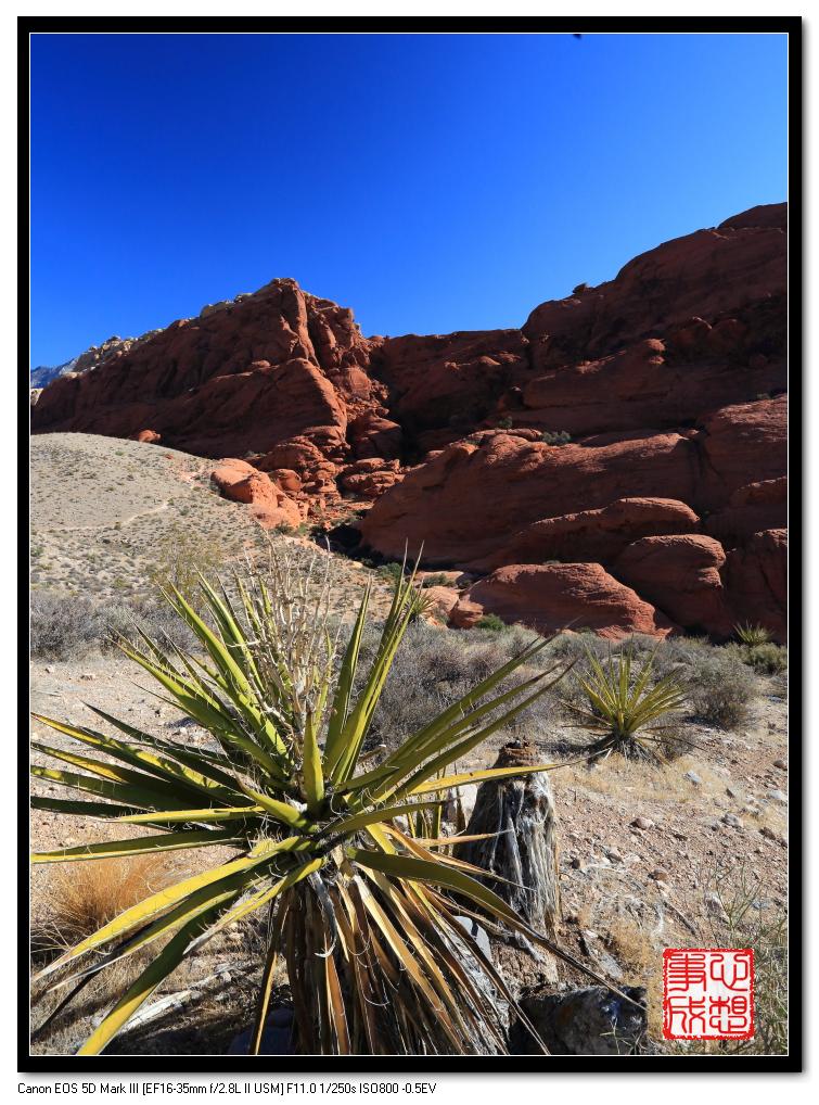 【心想事成】Red Rock Canyon 红石峡谷之旅_图1-3